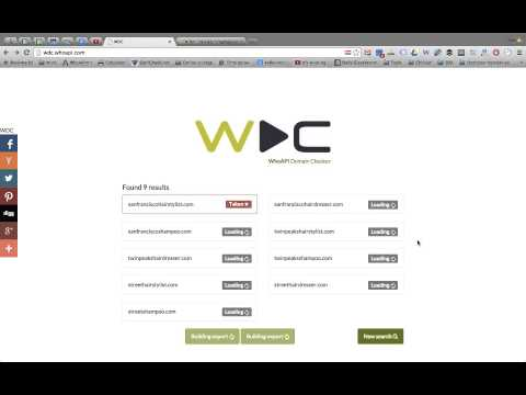 Advanced domaining tool: WDC (WhoAPI Domain Checker) - explainer video