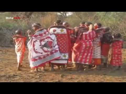 Isolated tribes: Maasai Wedding Ceremony and Dance - Traditional life of African tribes HD