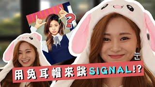 【TWICE】子瑜和團員們挑戰用兔耳帽跳SIGNAL?