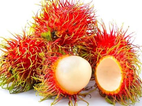 Weird Fruits: 4 of the World's Strangest - YouTube