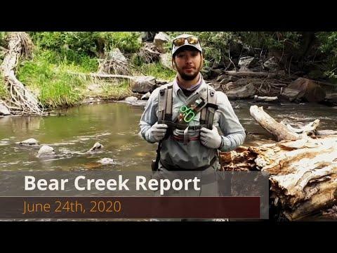 Video Fly Fishing Report: Bear Creek