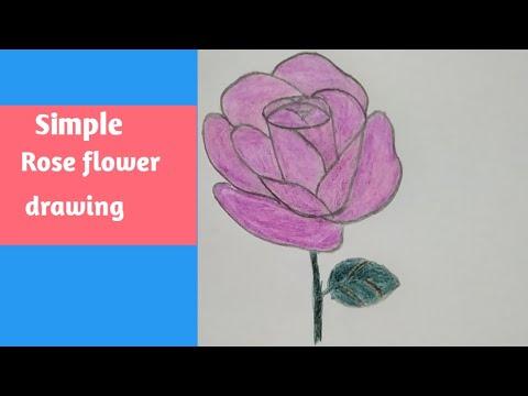 Simple rose flower drawing|| step by step rose flower drawing