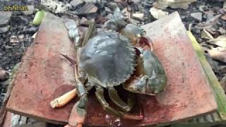 Nướng ngói con cua biển * Lê Nhàn