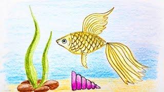 Как нарисовать рыбу - уроки рисования для малышей от Варвары Зуевой(Композиция