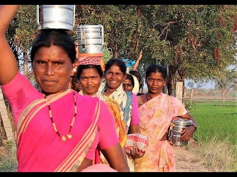 Women Working in the Farms || India ||