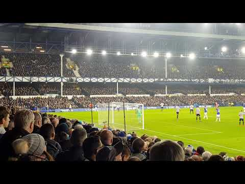 Richarlison score goal Everton Vs Newcastle United