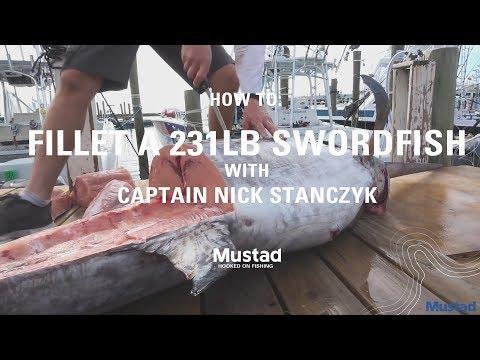 How to clean a 231lb swordfish with Captain Nick Stanczyk