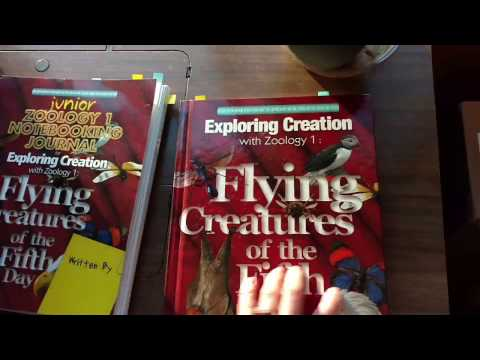 1st grade science curriculum review & Comparison. Apologia Exploring Creation vs A Beka