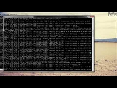 Weblogic admin server and cluster start/stop operations - WEBLOGIC_2