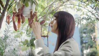 出演者:山本美月 篇 名:「観葉植物」篇 15s 商品名:シャーメゾン 企...