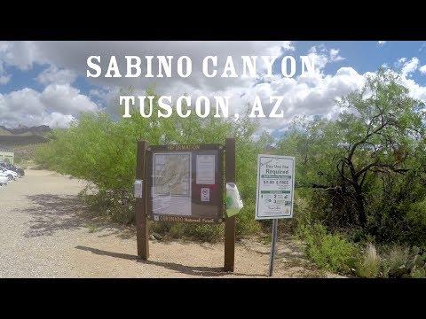 Sabino Canyon Virtual Run with Ambient Sound