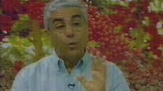 Entrevista Frederico Daher - Mundo do Campo TVE 31 08 06