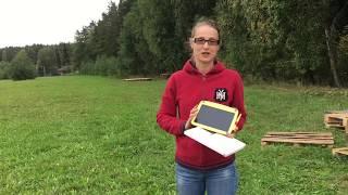 Приглашаем на АртФэст Лес - Опытный Боровляны