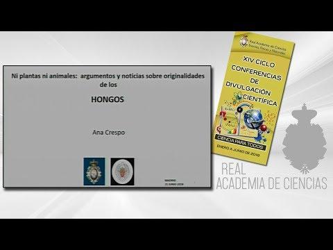 Ana Crespo de Las Casas, 21 de junio de 2018.22º conferencia delXIV CICLO DE CONFERENCIAS DE DIVULGACIÓN CIENTÍFICA.CIENCA PARA TODOS 2018▶ Suscríbete a nuestro canal de YouTubeRAC: https://www.youtube.com/channel/UCG6Ee-fsMyfKV_VJxuCl0JQ?sub_confir