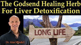 The Godsend Healing Herb For Liver Detoxification for a Long Life - Dr Alan Mandell, D.C.