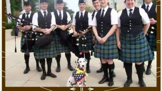 Deaf Working Dalmatians  Looking Back 2011