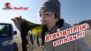ฮิโระซังพาขับรถเที่ยวญี่ปุ่นชมซากุระ-sugoi-japan-สุโก้ยเจแปน-ตอนที่-237-roadtrip2