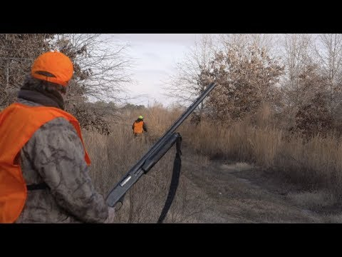 Rabbit Hunting With Beagles: Passing On An Arkansas Tradition