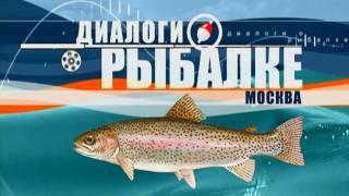 Диалоги о рыбалке. Платные пруды Форель