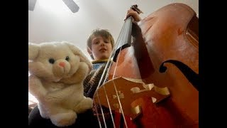 Double Bass Introduction for Kids - The Funny Bunny Show