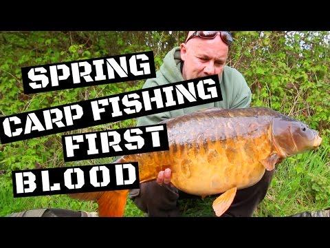 CARP FISHING IN SPRING FIRST BLOOD