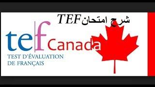 tout sur le TEF (Test d'évaluation du français)كل المعلومات حول امتحان TEF