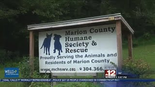 Marion County Humane Society to waive adoption fees for 'Clear the Shelter' event