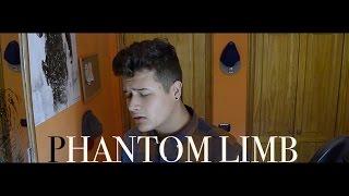 Phantom Limb - Yellow Mellow (OFFICIAL Cover Abraham Glez)