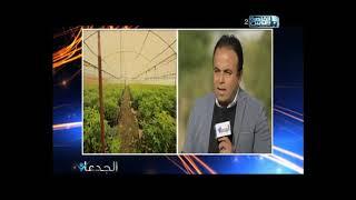 غانم يرصد فى الجدعان   النهر الأخضر أمل مصر فى زراعة اشجار الماهوجنى عالية القيمة