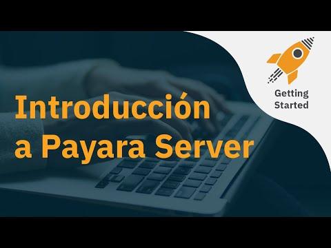 একটি Payara সার্ভার Introducción thumbnail