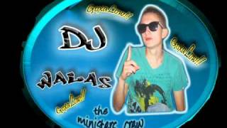 Mi Mayor Atraccion _Dj walas