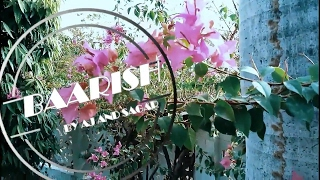 Baarish | Half Girlfriend | AJ&Sagar (Unplugged Cover)