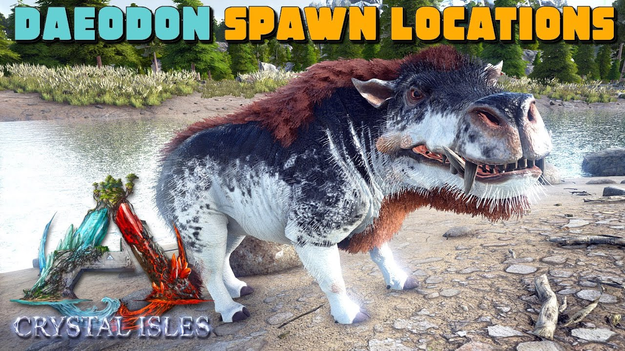 Ark Crystal Isles Daeodon Common Spawn Locations Taming Youtube Ark daeodon taming and breeding! ark crystal isles daeodon common spawn locations taming