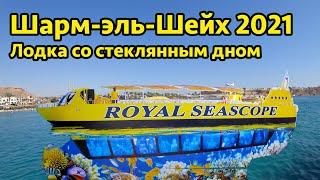 Шарм эль Шеи х 2021 лодка со стеклянным дном море рыбы в Красном море в Египте