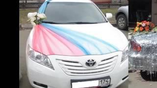 Decorate Car Wedding   Car Decor Picture Ideas