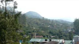 Munnar view