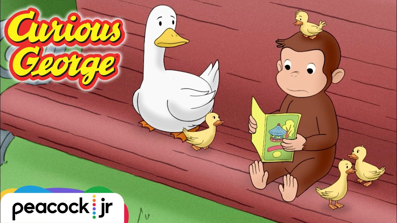 George Helps a Family of Ducks! | CURIOUS GEORGE