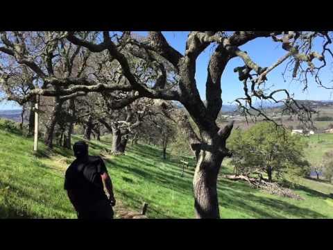 21st Vintage Cup - Skyline Wilderness Park