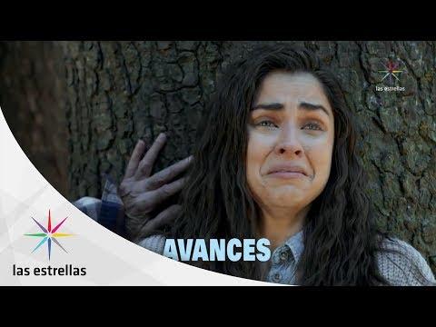 Sin Tu Mirada  Avance  #conlasestrellas