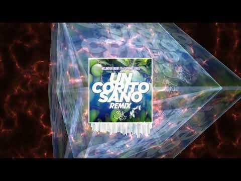 Un Corito Sano - Welinton Quiw Ft. El Primo Luka (Sak GD Remix)