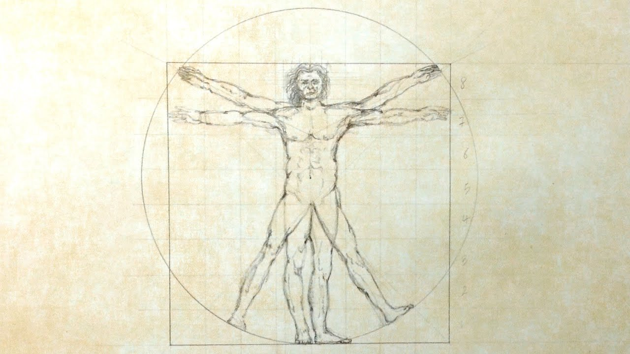 Vitruvian Man - Speed Drawing | Doovi
