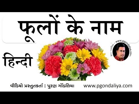 फूलों के नाम flowers name in hindi  learn hindi by, Beautiful flower
