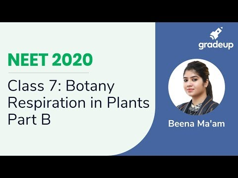 NEET 2020 | Respiration In Plants - Part B | Botany | Class 7 | Class 11 Biology | Gradeup JEE