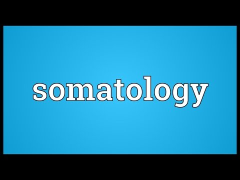 Header of somatology
