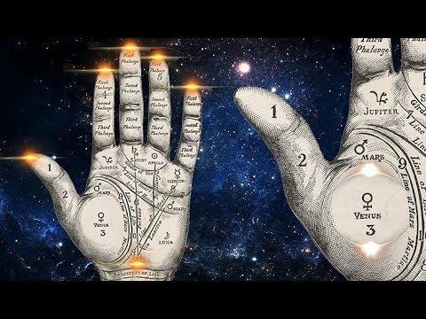 Partes de la palma dela mano