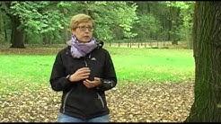 Rebecca Hundeschule Berlin: Interview mit der Hundetrainerin Rebecca Gander