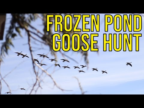 Goose Hunting On A Frozen Pond