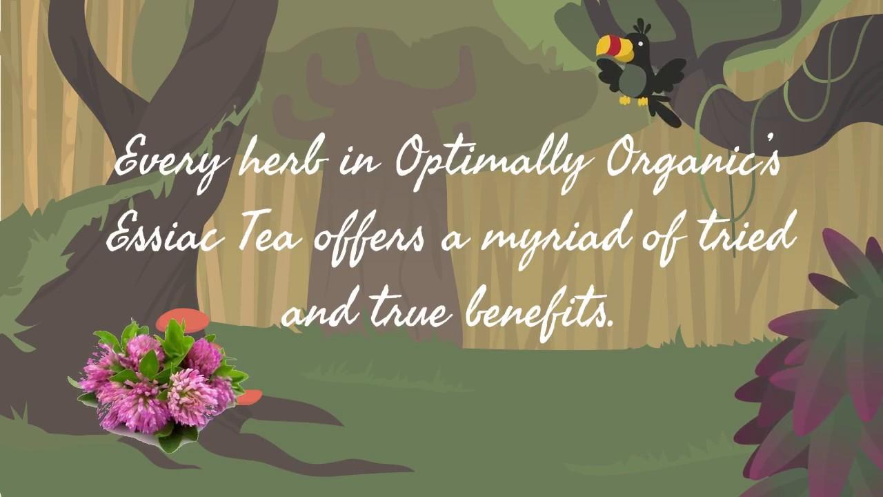 Cancer cure essiac herbal tea - Essiac Tea Review