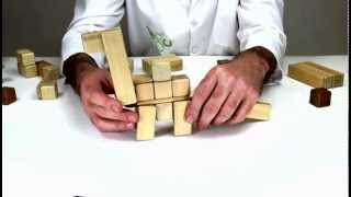 Building An Apatosaurus Out Of Organic Wooden Toys From Tegu