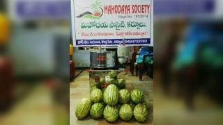 Mahodaya society kurnool